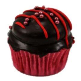 FL Raspberry Choc Cupcakes